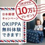宅配ボックスではなく宅配バック 日本郵便が無料配布