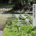 法改正で売買や賃貸の際に必要となった水害リスクへの説明とは?