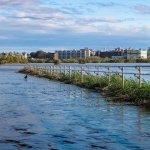 河川浸水被害対策の改正法案/不動産投資に影響は?